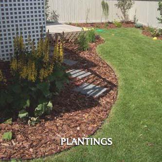 plantings - Downunder Landscaping