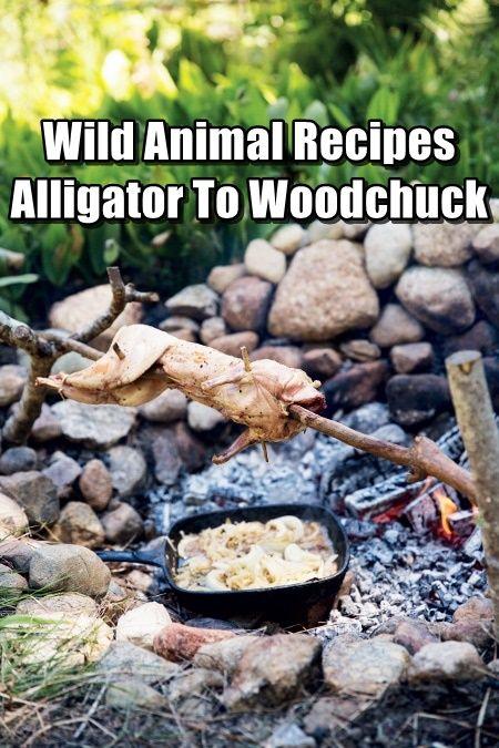 Wild Animal Recipes - Alligator To Woodchuck food shtf prepping homesteading survival,recipe,recipes,preparedness,teotwawki,