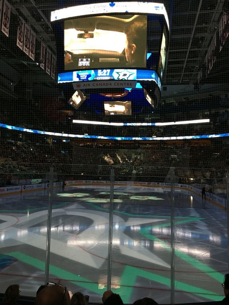 Toronto Maple Leafs 2015-16