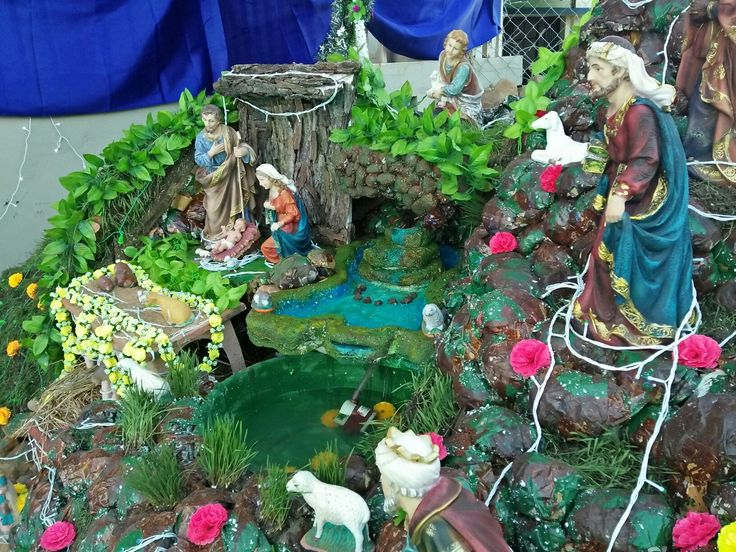 #nativity 2017 #georgiana's christmas