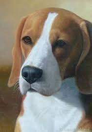 Image result for honden schilderijen