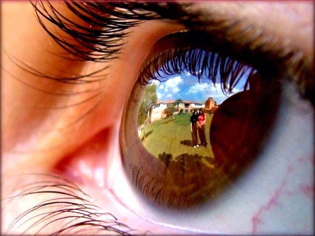 #Curiosidade sobre os nossos #olhos #3
