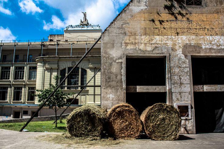 #MuseoGallardo #Rosario