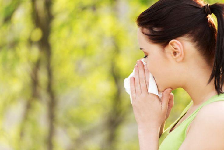 Pollen : pic allergène prévu sur le territoire