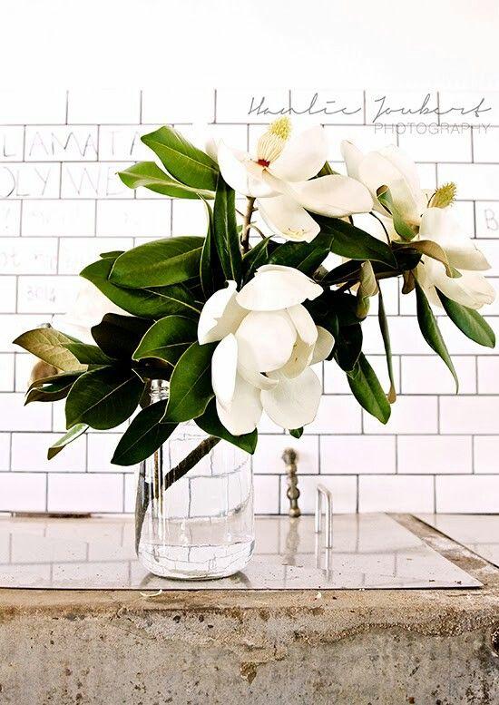 Magnolia Arrangement. Large branches siimple glass jars/ vases.