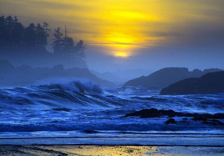 Storm watch in Tofino on Vancouver Island's West Coast, 3.5 hour drive from Victoria. Also best place for surfing.