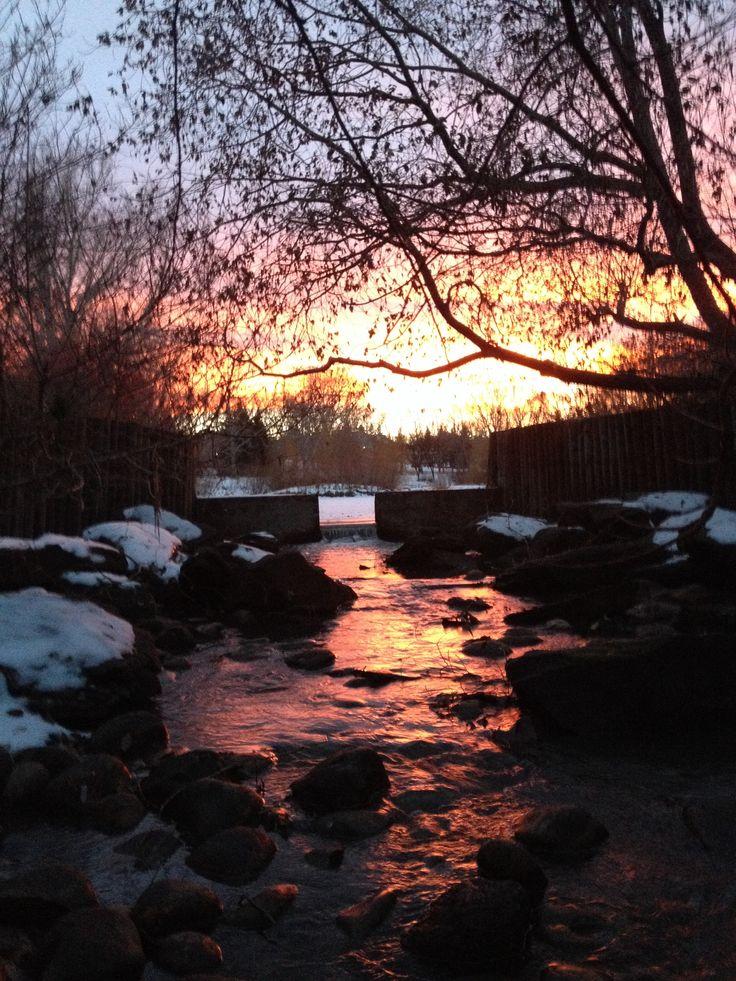 Sunset at backyard park