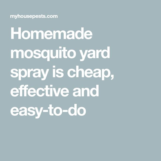 Homemade Mosquito Yard Spray Is Cheap, Effective And Easy