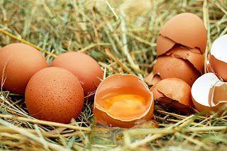 Altro che panettone: perché mangiare uova anche a Natale