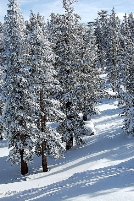 6 Tips to Create a South Lake Tahoe Winter Vacation to Remember