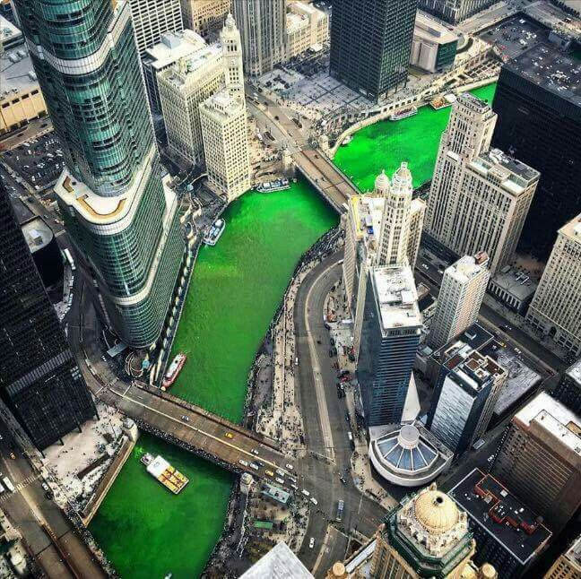 Green Chicago River!