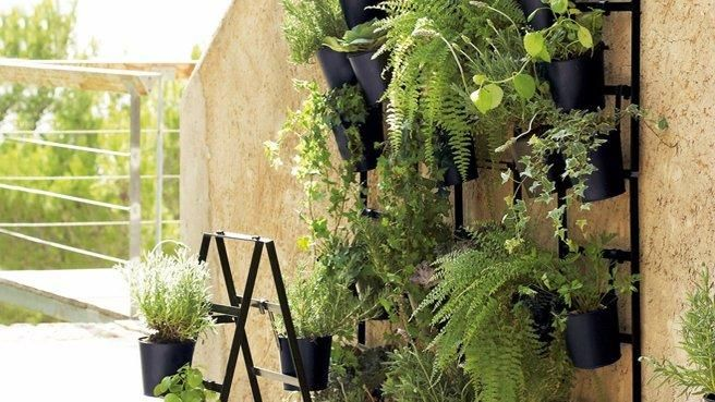 un mur v g tal l ext rieur gardening garden ideas and plants. Black Bedroom Furniture Sets. Home Design Ideas
