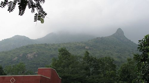 The Snout of Arunachala