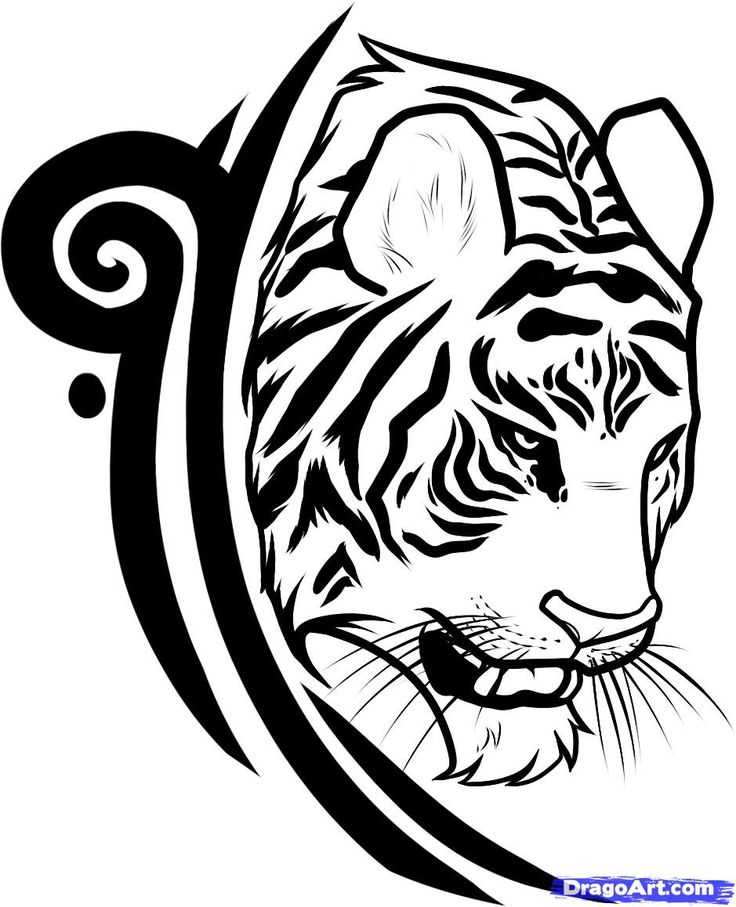 tribal tiger designs draw a tiger design