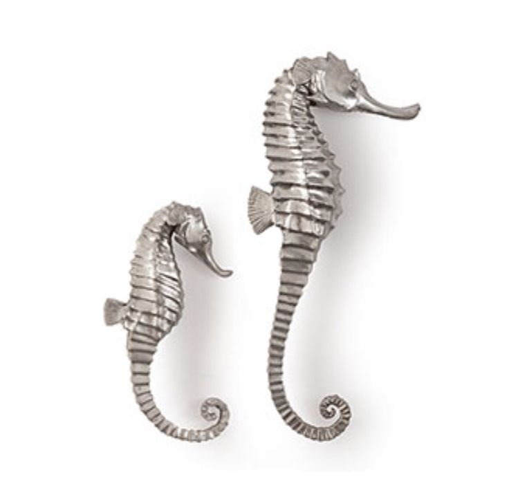 Seahorse Wall Art 17 best 3d wall art images on pinterest | 3d wall, 3d wall art and