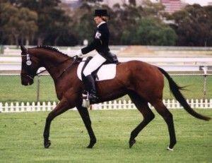 Exercises For Horseback Riding