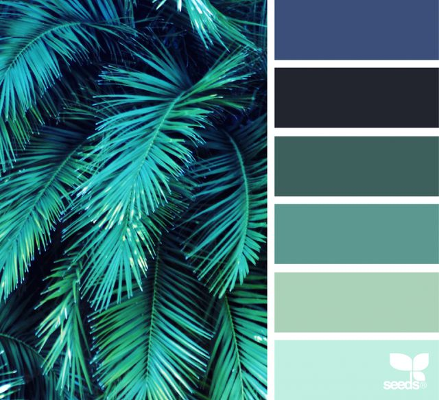 Color Frond Petrol
