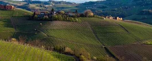 http://www.wine-searcher.com/m/2017/04/2013-barolo-vintage-one-for-the-ages