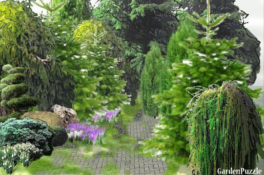 -wiosna.... - GardenPuzzle - projektowanie ogrodów w przeglądarce
