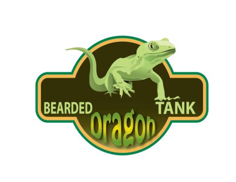 Bearded Dragon Food List: 88 Things Your Dragon Is Allowed To Eat   Bearded Dragon Tank
