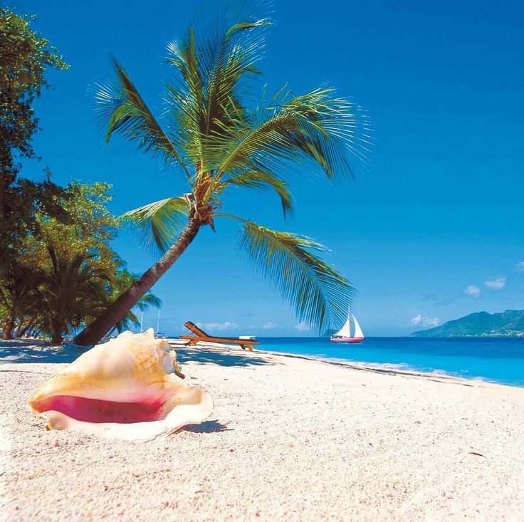 Island Beach Scenes: Tropical Island Scenes