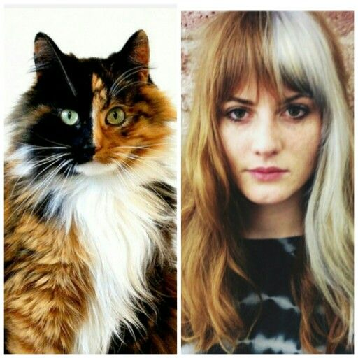 2015 Trend Forecast: Calico Haircolor by Bleach London. Irregular Color Placement #streetstyle