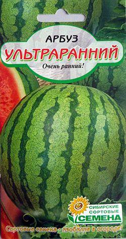 Лучшие сорта арбузов для средней полосы: ультраранний ...