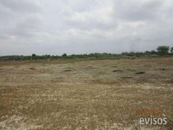 Venta de terreno industrial en Cieneguillo, Sullana VENDO TERRENO INDUSTRIAL 3 HECTAREAS. SULLANA- PIURA. Aplanado, ideal para agroindustria. En  zona ... http://sullana.evisos.com.pe/venta-de-terreno-industrial-en-cieneguillo-sullana-id-634454