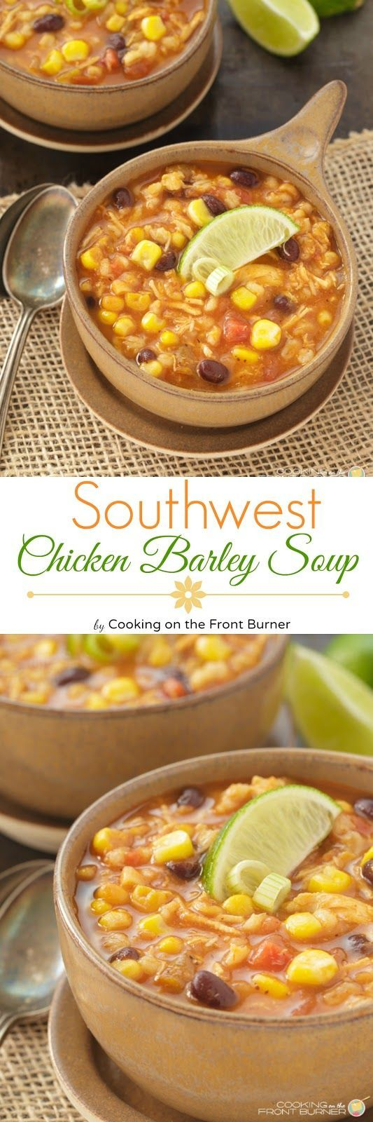 Southwest Chicken Barley Soup ~ Chocked full of wonderful ingredients! A great comfort dish!