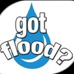 Got Flood?: Three Key Action Steps to Minimize Flood Damage   Got Mold? Disaster Recovery Services
