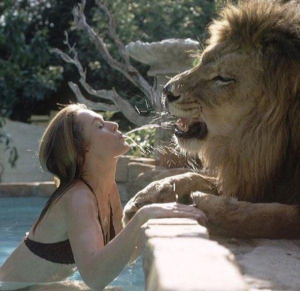 Tippi Hedren ed il suo leone domestico...   <3