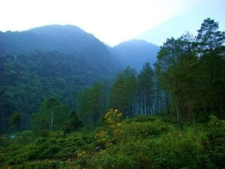 Banjaran (PBS) –  Pesona wisata Gunung Puntang tidak sekedar menyajikan sensasi indahnya alam pegunungan dan hutan pinus. Lokasi in...
