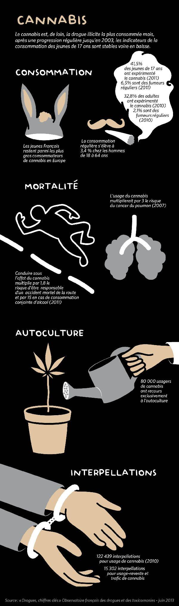 Les chiffres clés du cannabis - Drogues Info Service