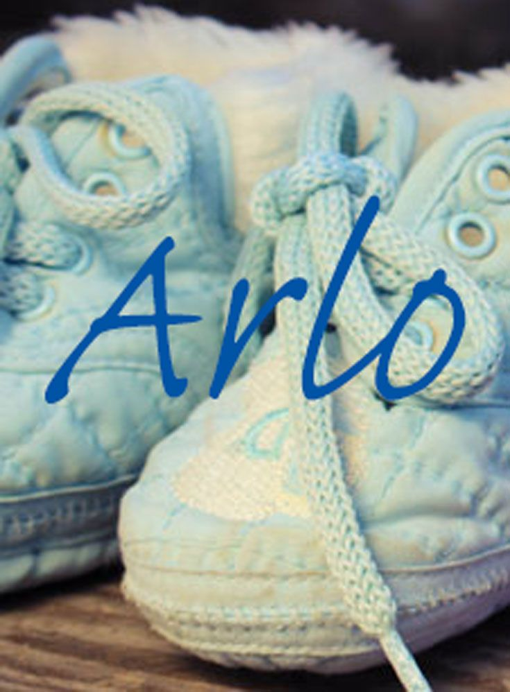 Arlo is a rare name with uncertain meaning. It was most likely a late 16th…