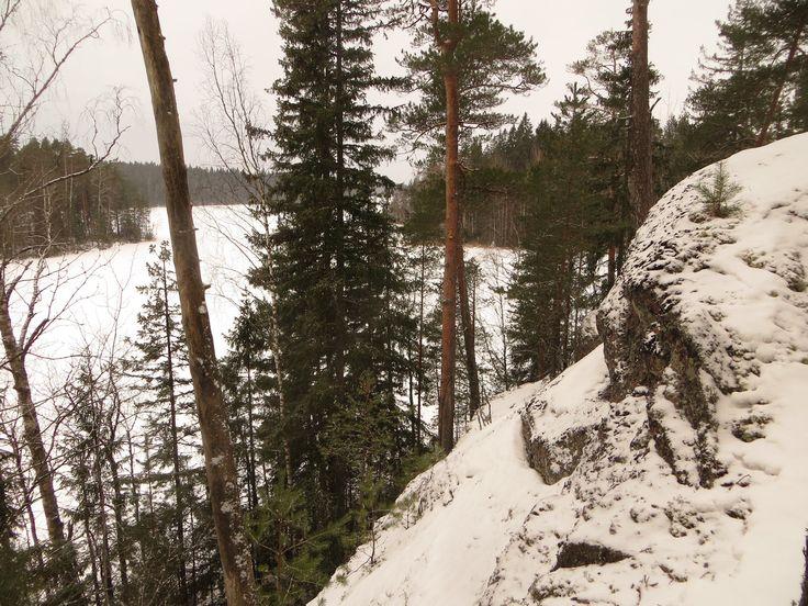 Hyypiönkallio 23.1. 2015  #liesjärvi #kansallispuisto #nationalpark #erärenki #retket