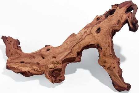 "Exotic Mopani driftwood creates a dramatic two-toned look in your reptile's habitat. Provides a natural way to decorate the terrarium, while offering a place for your pet reptile to climb or hide. Deep chocolate brown and light sandy yellow colors and striking shapes and textures are sure to be a focal point in any terrarium. Dense, all-natural driftwood is also an excellent way to anchor plants. SMALL 6"" - 8"" for $5, MEDIUM 10"" - 12"" for $7, LARGE 16"" - 18"" for $18. (Large is shown here.)"
