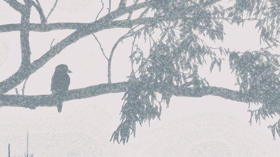 Rough Outline Bird on Branch Matte Blue and by BlackbirdArtDesign, $35.00