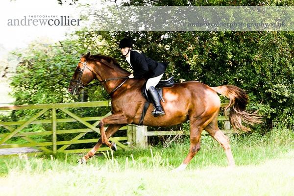 equestrian_portrait_gal_2