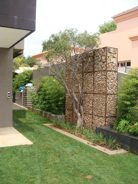 Interesting look, with the section of gabion wall - creates a wonderful backdrop for the tree.     by Badec Bros Deco, via Flickr