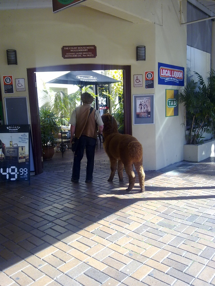 Courthouse Hotel, Mullumbimby Australia