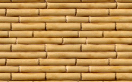 Fondo de Bambú - Fondos de Pantalla. Imágenes y Fotos espectaculares.