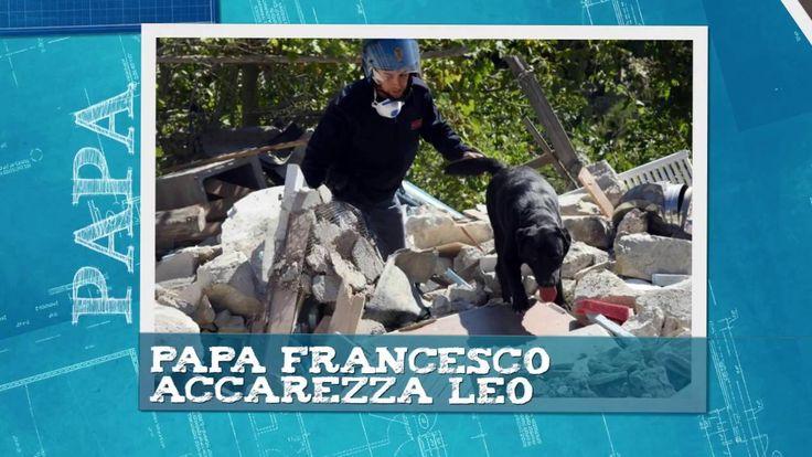 Terremoto Papa Francesco accarezza Leo labrador che ha salvato Giorgia