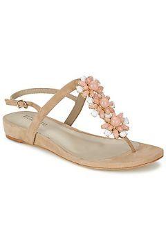 Sandaletler ve Açık ayakkabılar Luciano Barachini IOLE https://modasto.com/luciano-barachini/kadin-ayakkabi-sandalet/br36738ct19