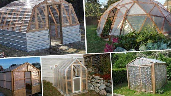 El Invernadero Grande Pequeño O Mini Es Una Manera De Tener Tus Propias Hortalizas En Temporadas Hos En 2020 Invernadero Casero Invernadero Construir Un Invernadero