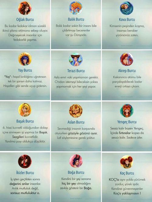 zodiac and burclar resmi
