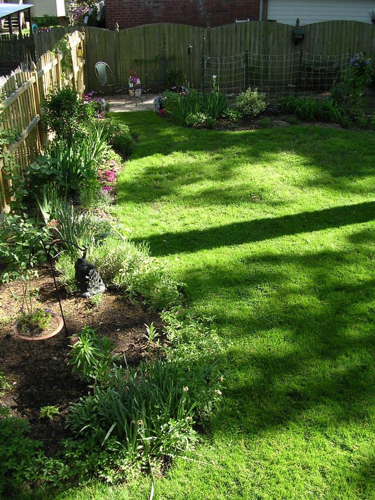 Dog Friendly Backyard Makeover : backyard oasis backyard ideas yard dogscaping a seattle dog friendly
