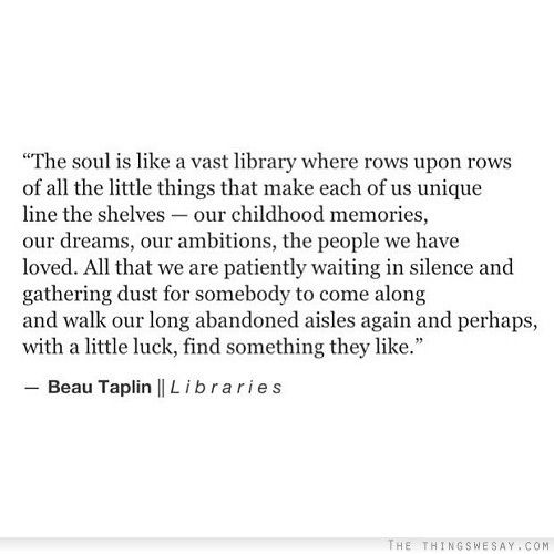 The soul is like a vast library where rows upon rows of all the little things that make each of us unique line the shelves our childhood memories our dreams our ambitions the people we have loved