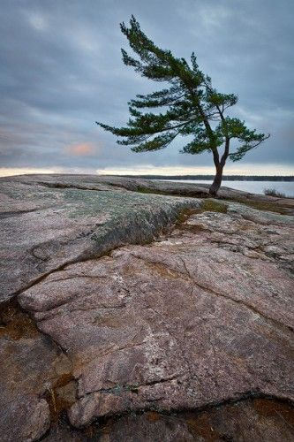 On The Edge - Killbear Provincial Park