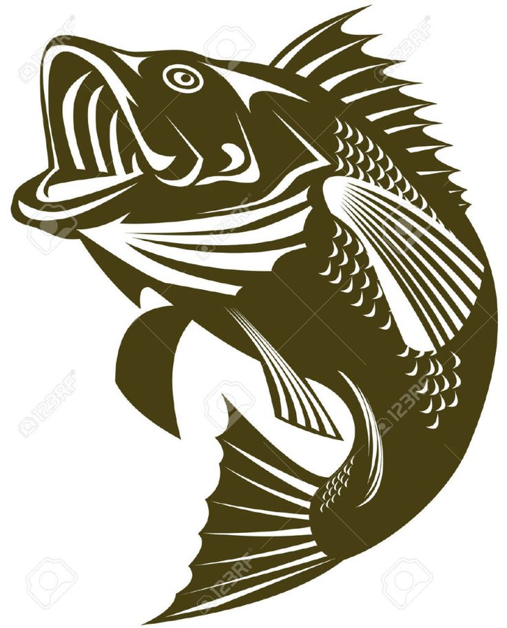 this is best bass fish outline for your project or presentation to use for personal or commersial