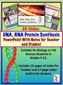 Dna (deoxyribonucleic Acid), Rna, Protein Synthesis. Customised Water Bottles Asustek Computer Inc. University Of St Petersburg Uk Rental Cars. Internet Through Directv How Long Is A 5k Run. Auto Insurance No Money Down. Bachelor Of Arts In Psychology Online. Storage In Santa Clara Ca Satellite Tv Deals. Resource Project Management Software. Vehicle Storage Insurance Text While Driving